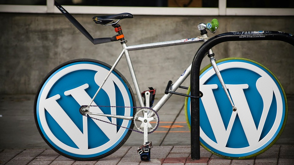 Wordpress ��� ��������������. �������� ������